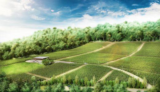 マオイ自由の丘ワイナリーを運営する「北海道自由ワイン」が新醸造所計画を発表