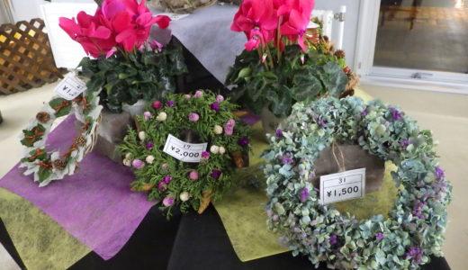 札幌・豊平公園で「ハンドメイド・クリスマス展」 冬の鉢花やリースも販売