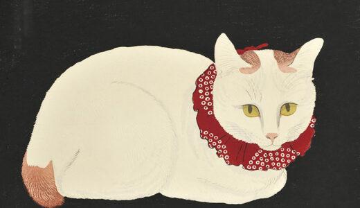 札幌・北海道立近代美術館で「猫まみれ展」 猫モチーフ雑貨などの販売も