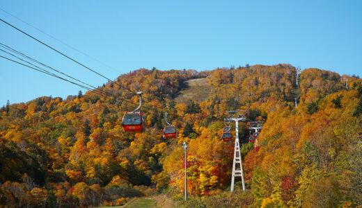 札幌国際スキー場で「秋のゴンドラ」今年も営業 眼下に広がる紅葉を楽しめる
