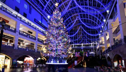 サッポロファクトリーのクリスマスイルミネーションが今年も点灯 約5万球のライトが彩る